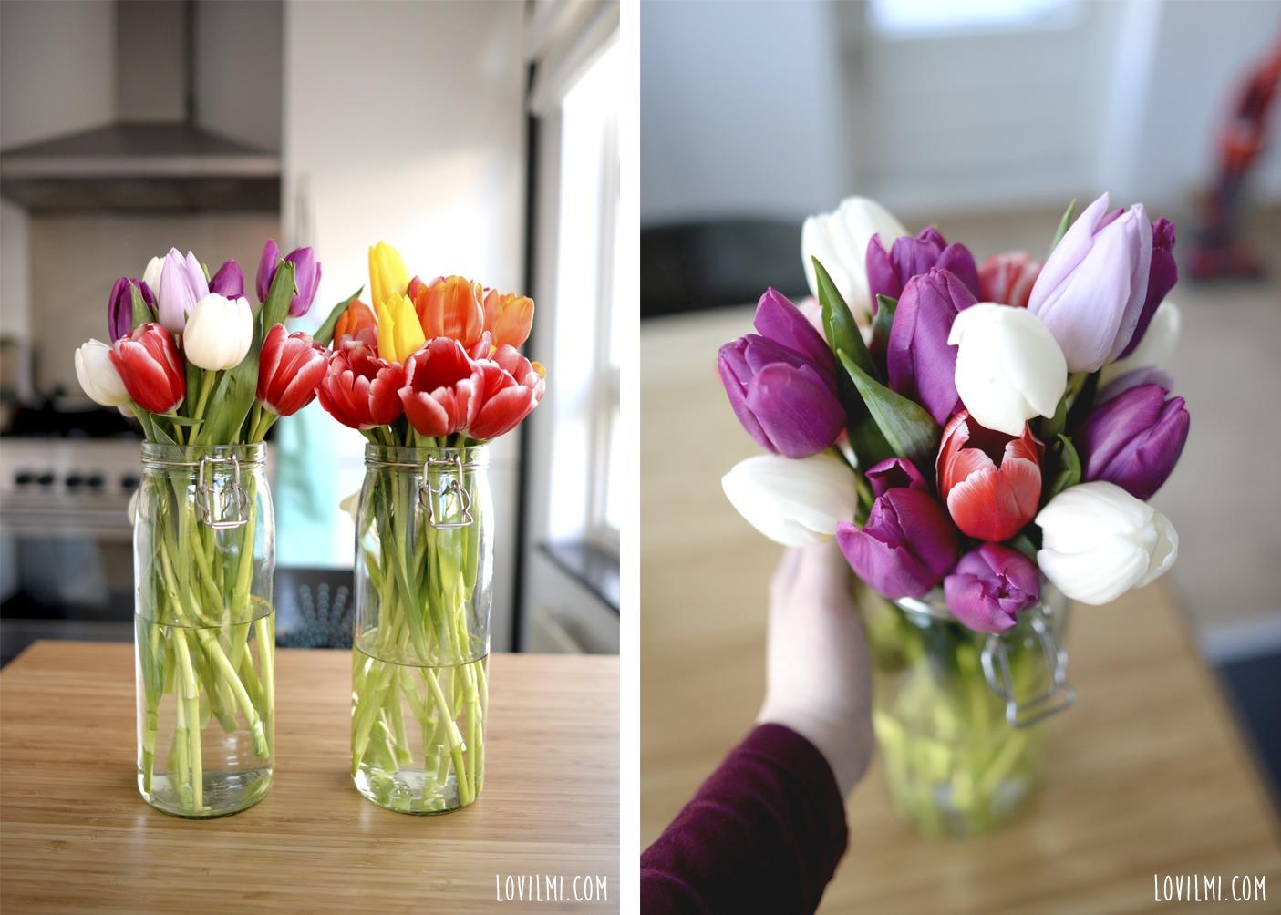 tulipanese2jemplo