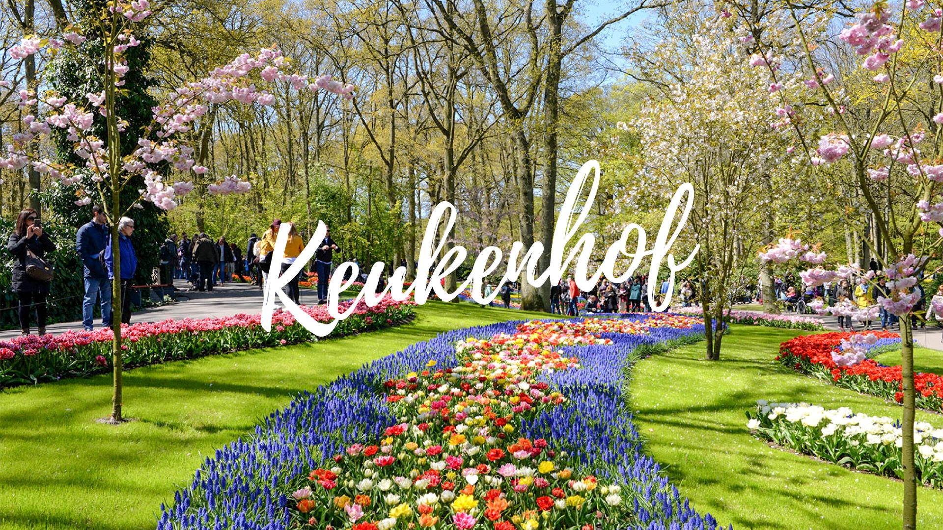 keukenhof el jard n de flores m s grande de europa lovilmi
